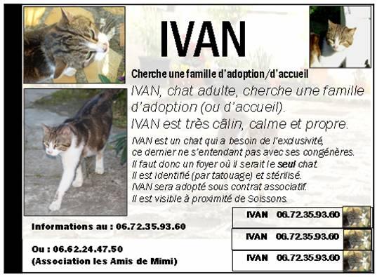 LES AFFICHES POUR ADOPTION Ivan11