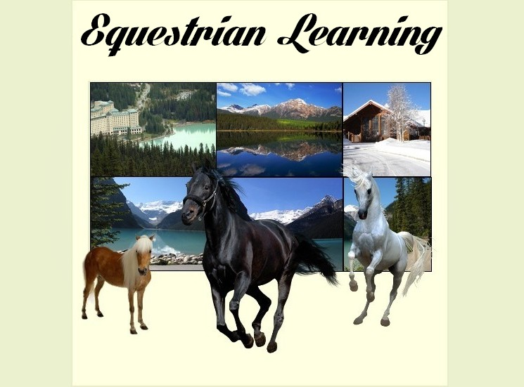 Equestrian Learning