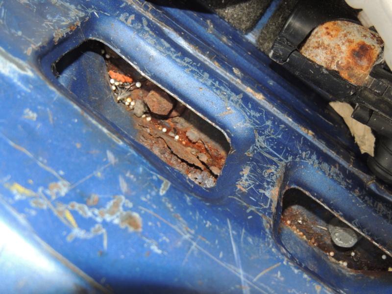 [Pré-vente] 309 GTi16 Bleu Miami Dscn2533