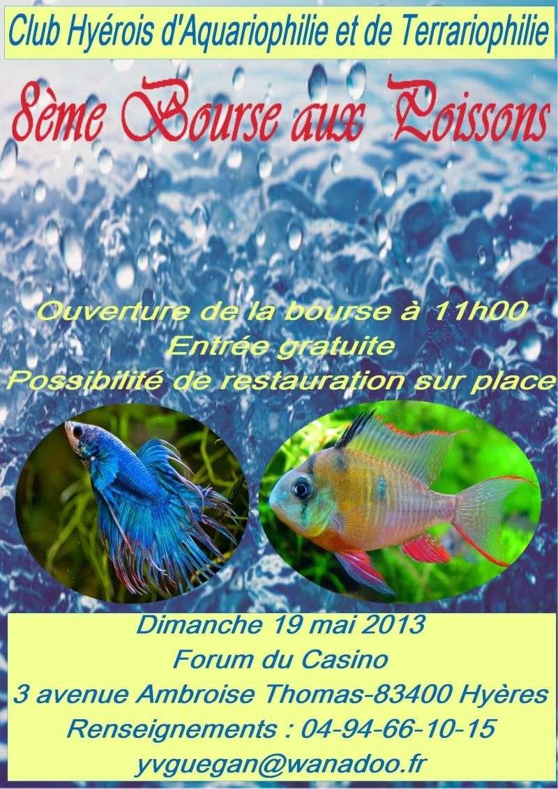 bourse à hyères ce dimanche 19 mai 2013 Affich11