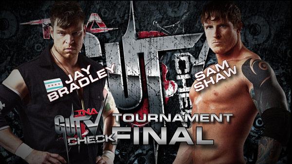 TNA Slammiversary du 02/06/2013 Ppv810