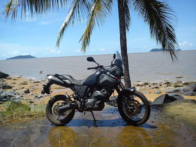 Au soleil de Guyane Dsc01811