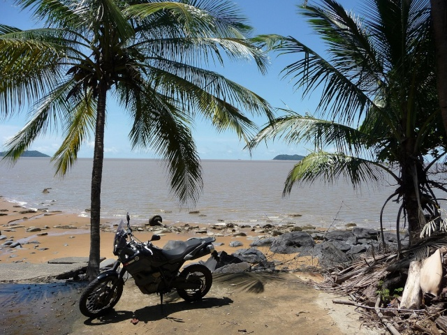 Au soleil de Guyane P1270110