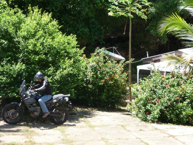 Au soleil de Guyane P1270114