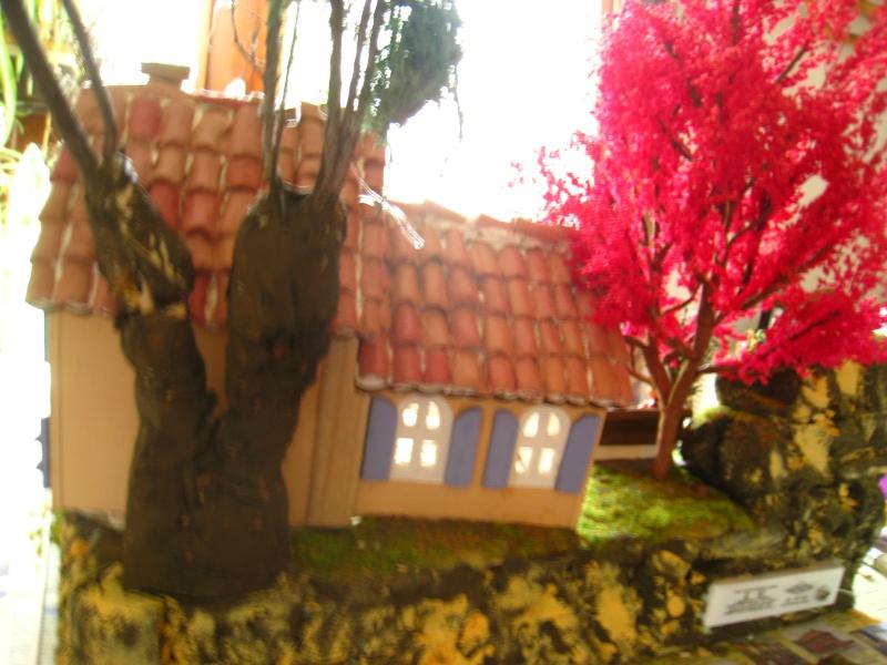 Ma première maison provençale (Fabipat) Img_8527