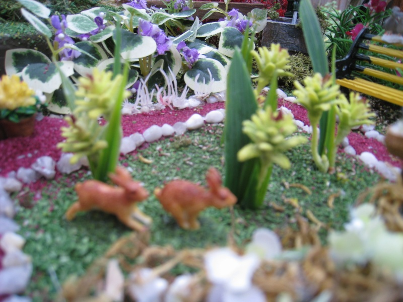 Eden fantaisie (1e essai fleuri) Img_8621