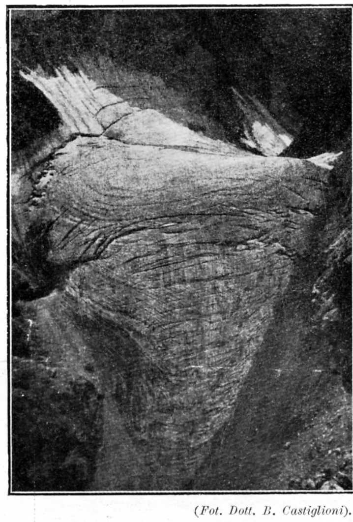 I ghiacciai delle Dolomiti - Pagina 4 Strut210