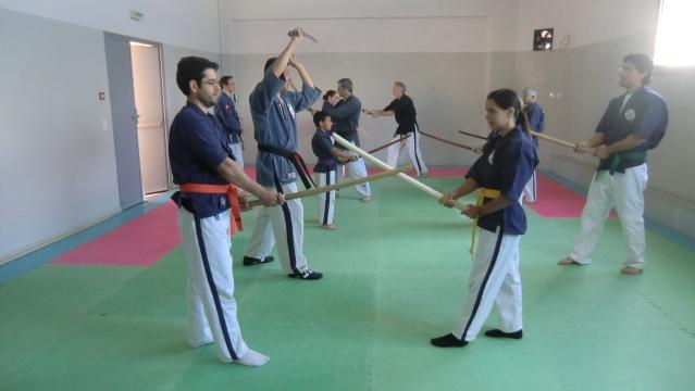Stage de coupe au katana et à la naginata à Théza le 18 mai 2013 Cimg3212