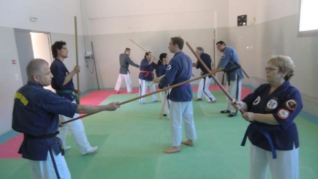 Stage de coupe au katana et à la naginata à Théza le 18 mai 2013 Cimg3311