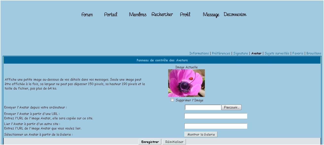 31 - Un nouveau thème.............. 'Bleu' !!! - Page 11 Profil10