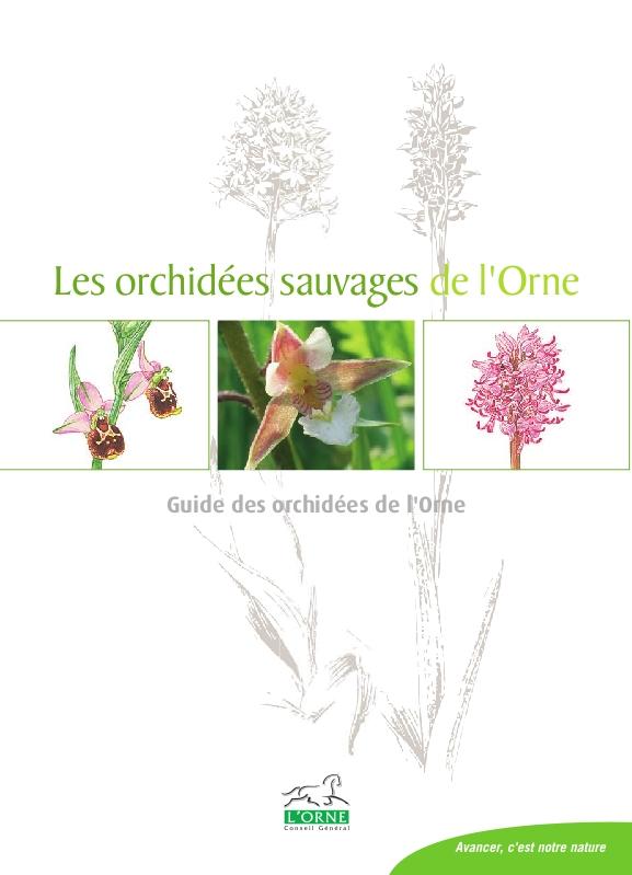 Les orchidées sauvages de l'Orne (Plaquette) 72dpip10