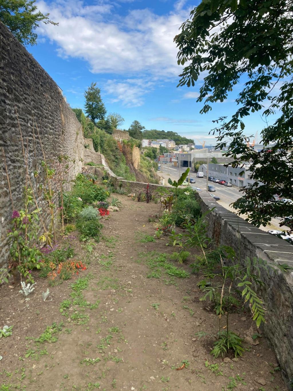 Jardin extraordinaire sur les falaises de Brest 10927710