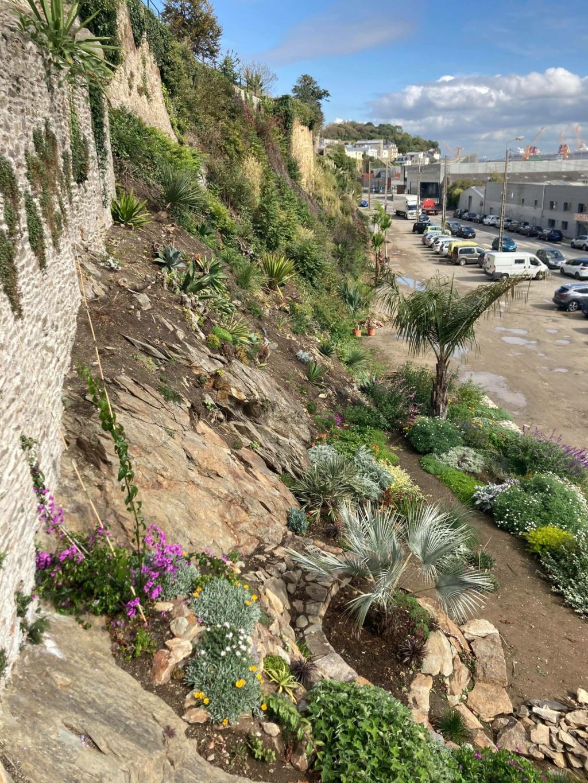Jardin extraordinaire sur les falaises de Brest 12019910
