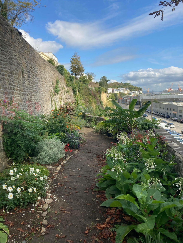 Jardin extraordinaire sur les falaises de Brest 12026010
