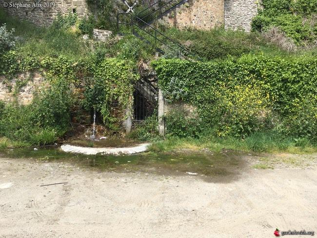 Jardin extraordinaire sur les falaises de Brest 98441310