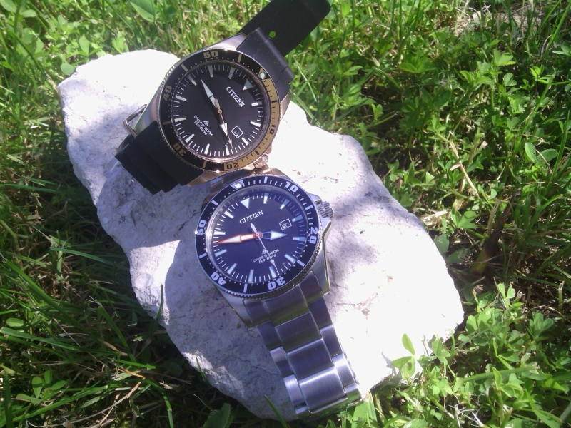 citizen - Duo de Citizen Excalibur....sur un cailloux....ma nouvelle se dore au soleil  C360_243