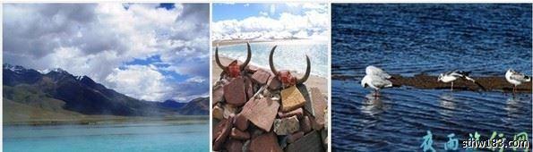 【暑假活动B】西藏之旅7月6-17拉萨--雅鲁藏布江--南迦巴瓦峰--林芝--纳木错深度全景  0_2810