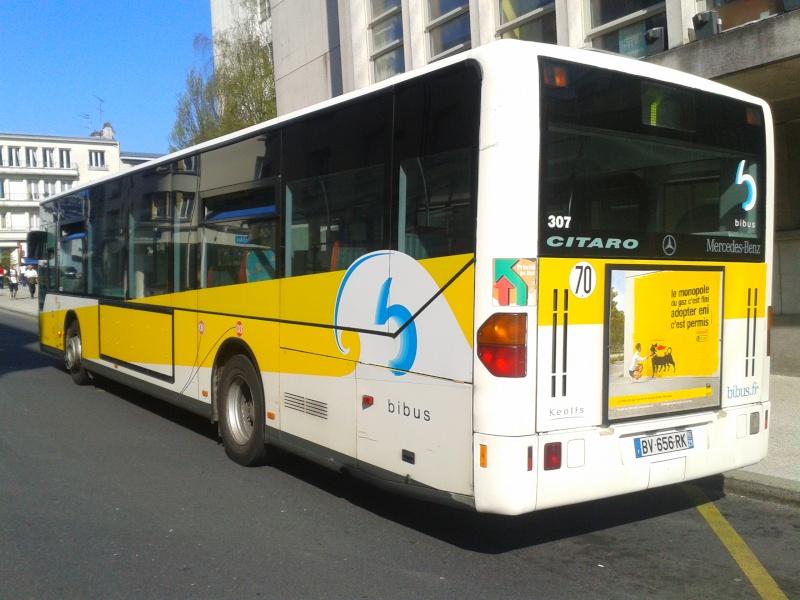 Citaro O530 et 530G 307_li11