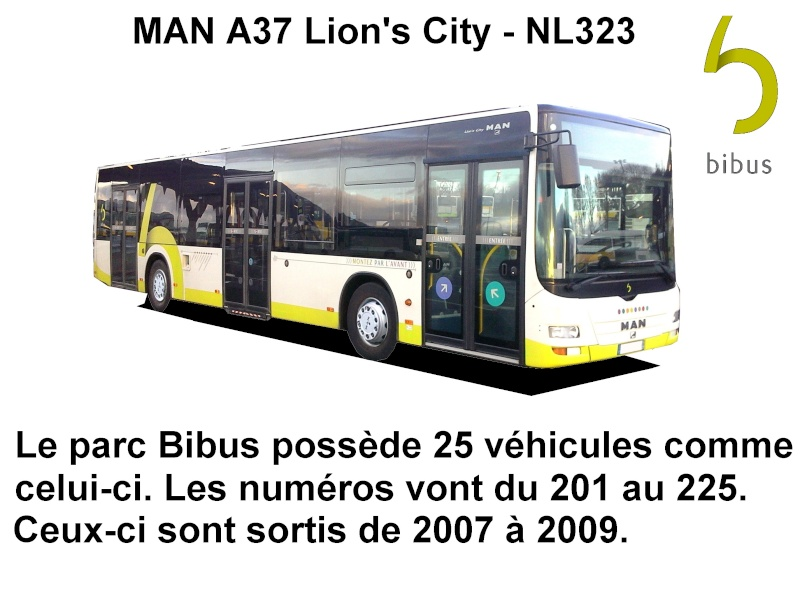 Brest (29) -  BIBUS - Page 4 Man_li11