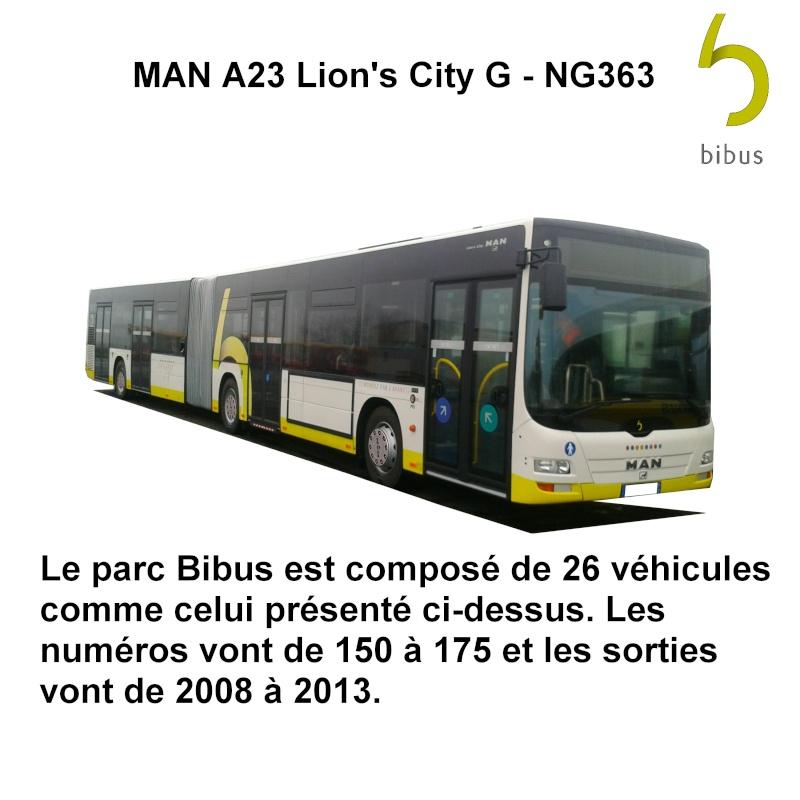 Brest (29) -  BIBUS - Page 4 Man_li12