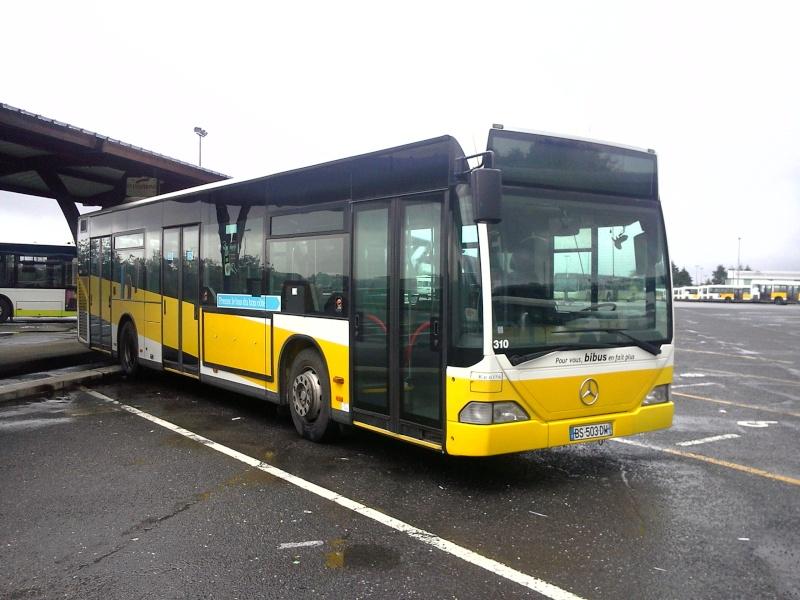 Citaro O530 et 530G Merced86