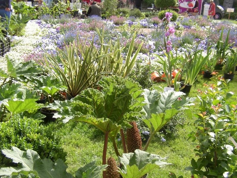 expo dans les jardins des remparts de vannes Vannes17