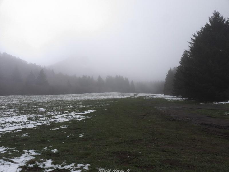 Balade hivernale au Puy de Dôme P1050420