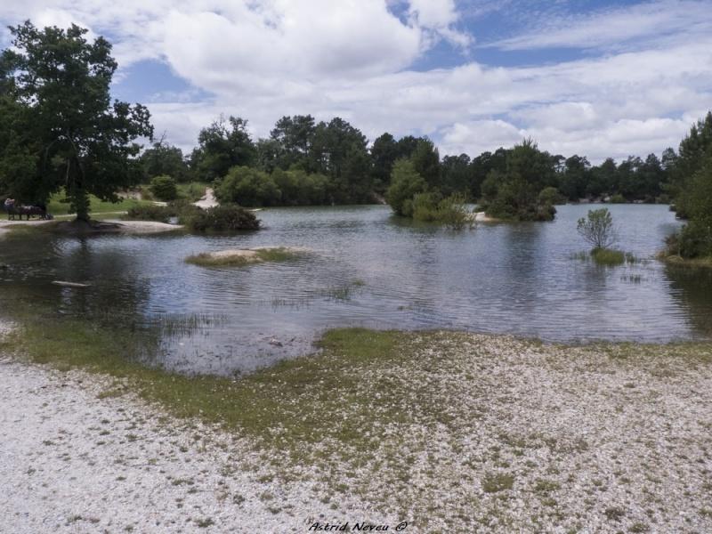 Inondations et débordements divers dans le Sud Bordelais P1080211