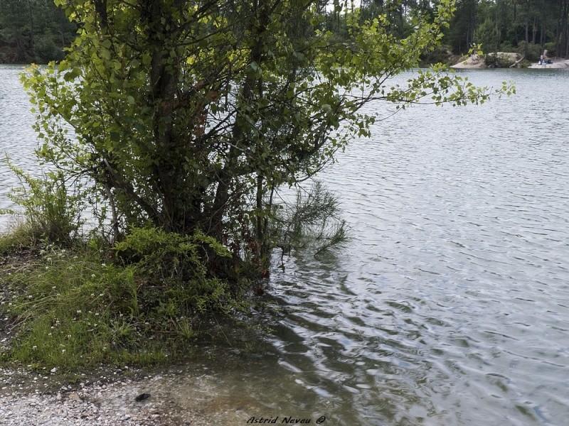 Inondations et débordements divers dans le Sud Bordelais P1080220