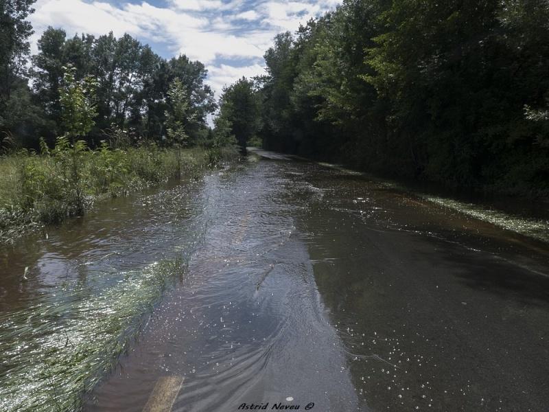 Inondations et débordements divers dans le Sud Bordelais P1080224