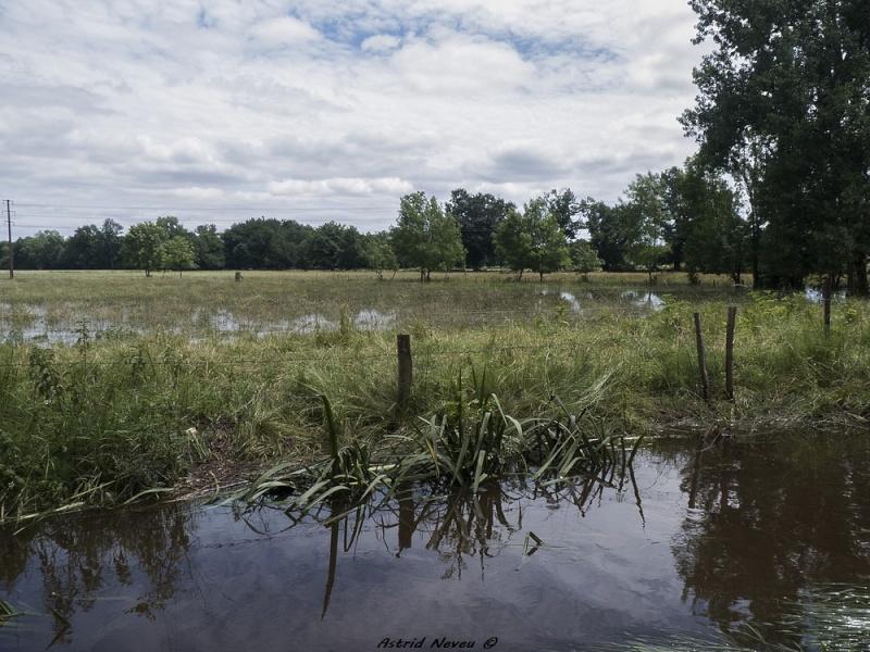 Inondations et débordements divers dans le Sud Bordelais P1080225