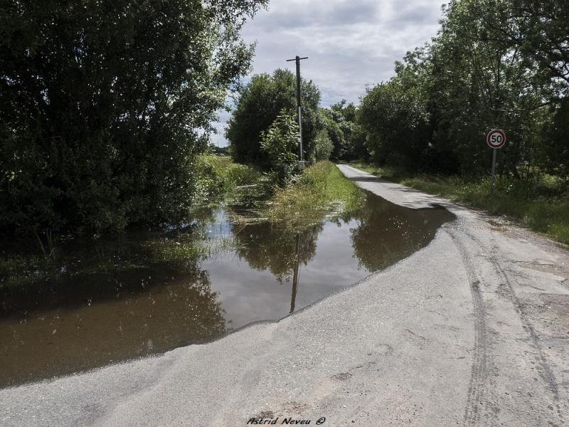 Inondations et débordements divers dans le Sud Bordelais P1080229