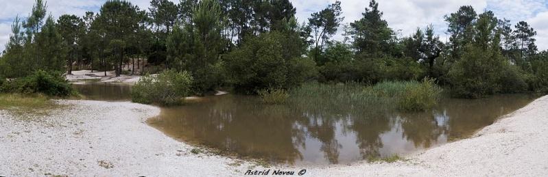 Inondations et débordements divers dans le Sud Bordelais Panora79