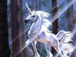 Votre Animal Totem Licorn12