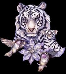 Votre Animal Totem Portra13