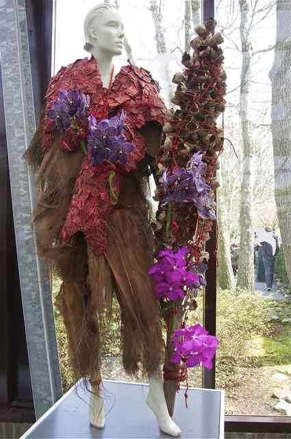 Tulipes, jacinthes et orchidées à Keukenhof _dsc0211