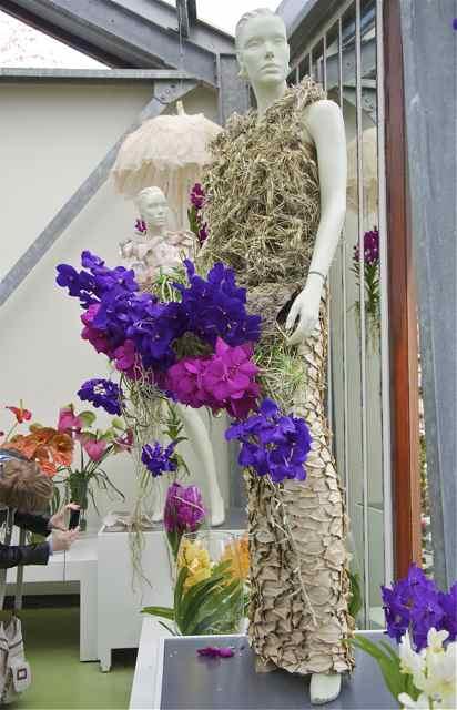 Tulipes, jacinthes et orchidées à Keukenhof _dsc0212