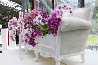 Tulipes, jacinthes et orchidées à Keukenhof Fauteu10