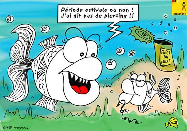 images drôle sur la pêche 04310