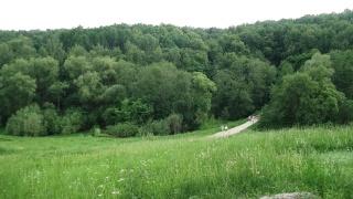 1 июня. Прогулка Царицыно. Dscf4449