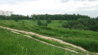 1 июня. Прогулка Царицыно. Dscf4450