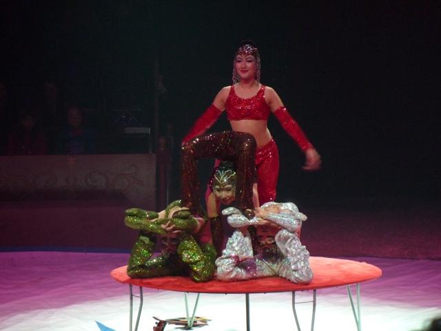 un tour au cirque ... P1060217