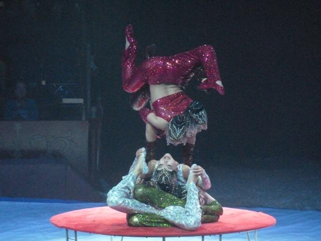 un tour au cirque ... P1060218