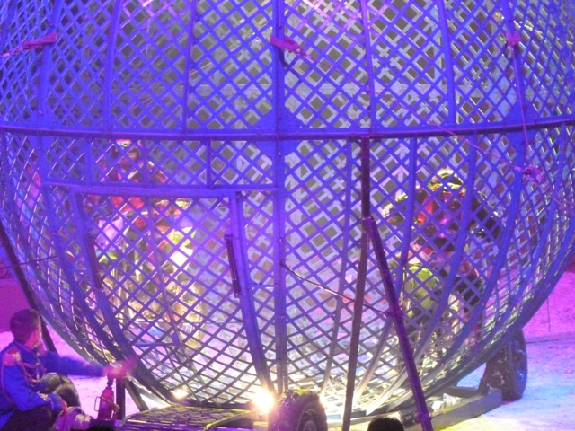 un tour au cirque ... P1060310