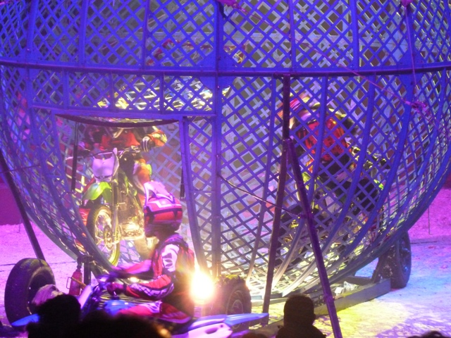 un tour au cirque ... P1060311
