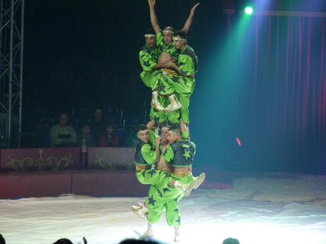 un tour au cirque ... P1060320