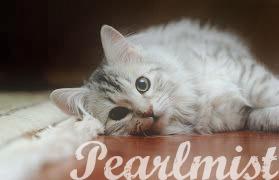 {Meg's Wonders} Pearlm10