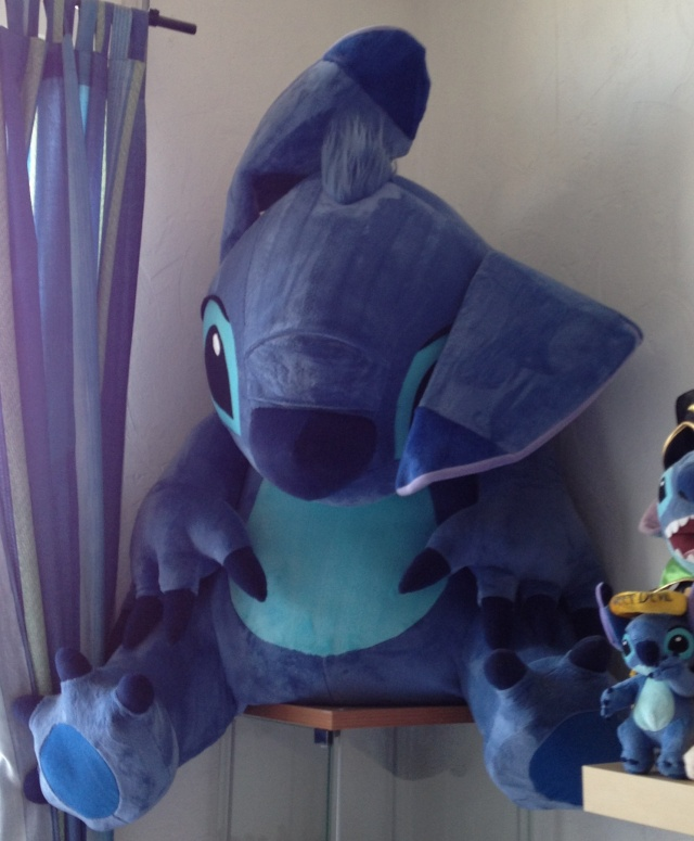 [Collection] MisterStitch et ses ... Stitch ! Img_1215