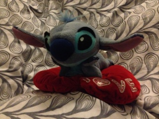 [Collection] MisterStitch et ses ... Stitch ! Img_1410