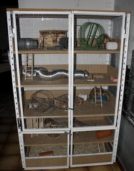 En construction d'une nouvelle cage  _mg_6952